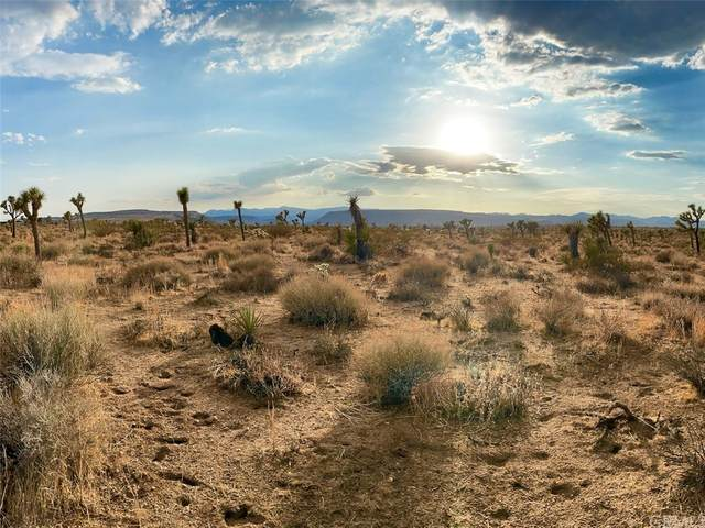 0 Aberdeen Drive, Yucca Valley, CA 92284 (#JT21166249) :: Mark Nazzal Real Estate Group