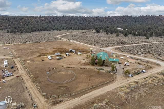 16150 Mount Lilac, Frazier Park, CA 93225 (#SR21166594) :: Jett Real Estate Group