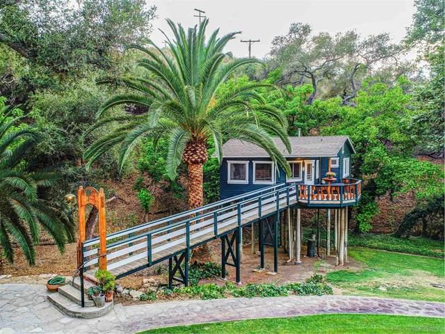 1102 Nicola Ranch, Fallbrook, CA 92028 (#210021481) :: Zutila, Inc.