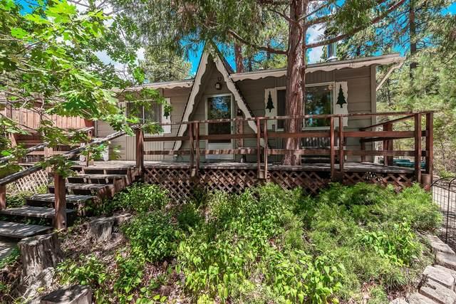 52854 Sugar Pine Drive, Idyllwild, CA 92549 (#219065501DA) :: Jett Real Estate Group