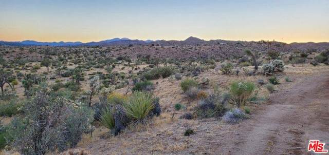 0 Nelson Avenue, Yucca Valley, CA 92284 (#21766372) :: Elevate Palm Springs