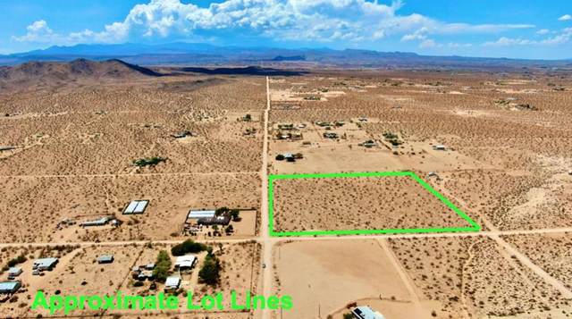 150 Bowman Trail, Landers, CA 92285 (#219065514PS) :: Realty ONE Group Empire