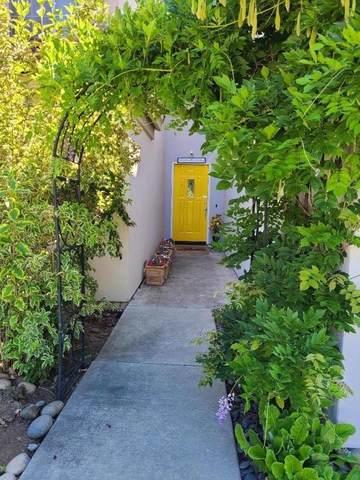 14713 Excaliber Drive, Morgan Hill, CA 95037 (#ML81855378) :: Jett Real Estate Group
