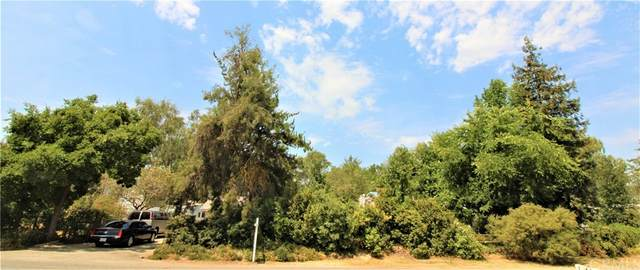 20350 Brightwood Road, Madera, CA 93638 (#FR21167349) :: Legacy 15 Real Estate Brokers