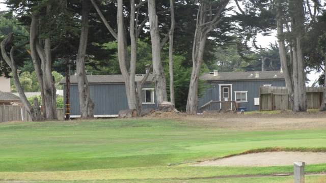 1009 Salinas Road, Outside Area (Inside Ca), CA 95076 (#ML81852109) :: RE/MAX Empire Properties
