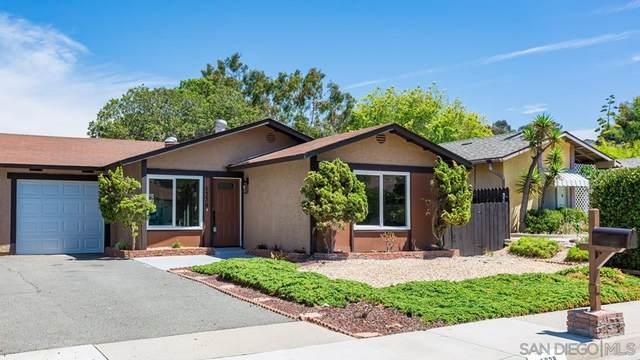 1338 Panorama Ridge Rd, Oceanside, CA 92056 (#210021620) :: The Kohler Group