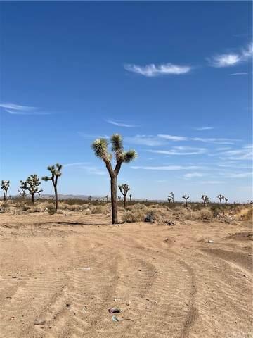4591132 Yucca, Adelanto, CA 92301 (#CV21167789) :: Latrice Deluna Homes