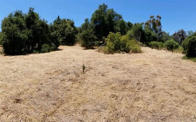 1 .15 Acres Jesmond Dene Rd, Escondido, CA 92026 (#NDP2108932) :: Corcoran Global Living