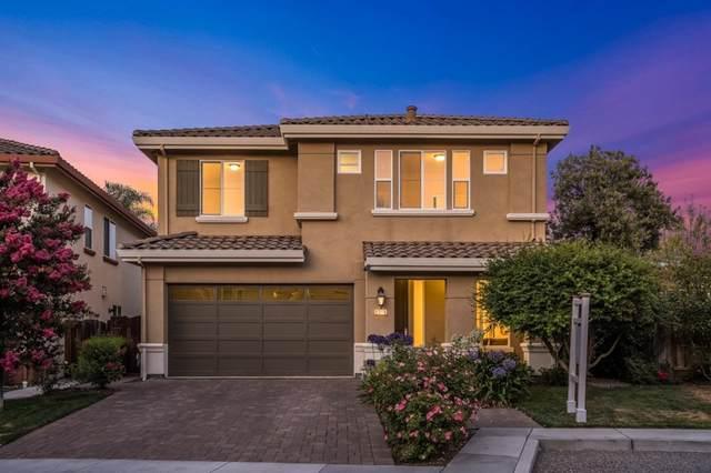 3016 Mousa Court, San Jose, CA 95135 (#ML81855203) :: RE/MAX Empire Properties