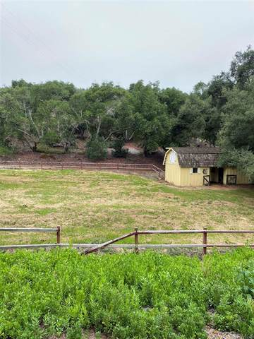 10975 Old Oak Holler, Valley Center, CA 92082 (#NDP2108950) :: Zen Ziejewski and Team