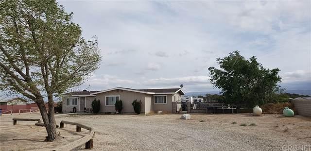 8332 W Avenue E4, Antelope Acres, CA 93536 (MLS #SR21168457) :: ERA CARLILE Realty Group