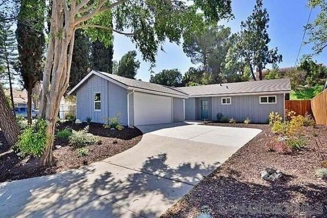 10350 Fairhill Drive, Spring Valley, CA 91977 (#210021787) :: Realty ONE Group Empire