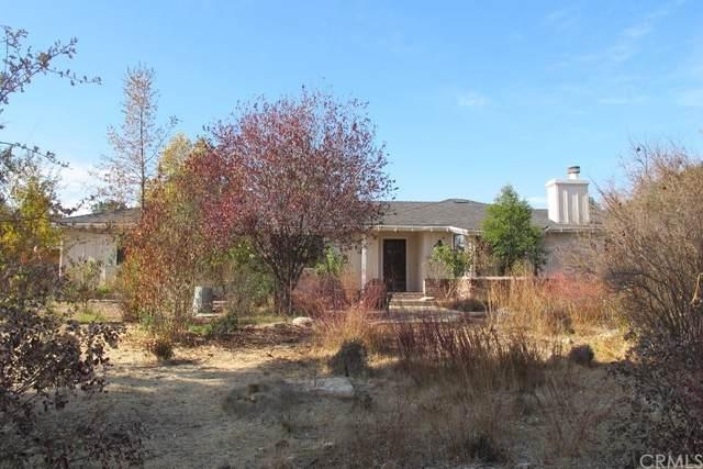 110 Foxtail Lane, Templeton, CA 93465 (#NS21168274) :: TeamRobinson   RE/MAX One