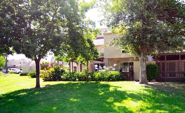 23622 Country Villa Road, Ramona, CA 92065 (#PTP2105437) :: Realty ONE Group Empire