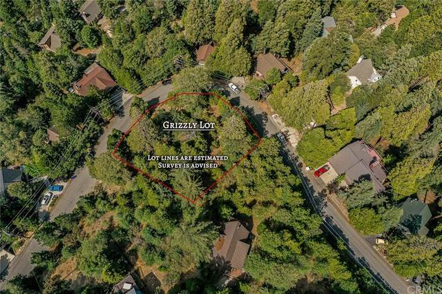 0 Grizzly Road, Lake Arrowhead, CA 92352 (#EV21168658) :: The Kohler Group