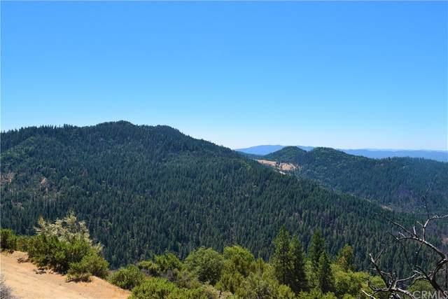 21923 Elk Mountain Road, Outside Area (Inside Ca), CA 95469 (#LC21169765) :: McKee Real Estate Group Powered By Realty Masters & Associates