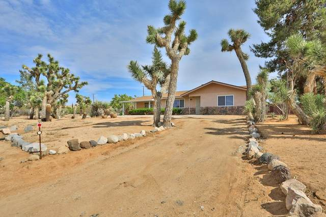 58213 Alta Mesa Drive, Yucca Valley, CA 92284 (#537865) :: Doherty Real Estate Group