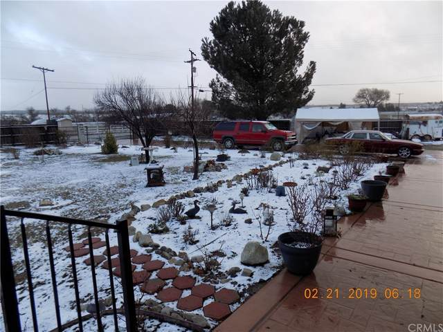 41541 Lake Riverside Drive, Aguanga, CA 92536 (#SW21170078) :: Millman Team