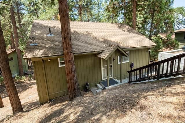 23041 Oak Leaf Lane, Idyllwild, CA 92549 (#NDP2109097) :: Latrice Deluna Homes