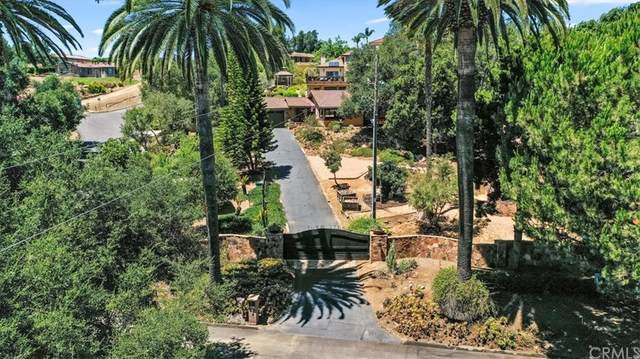 1729 S Hill Avenue, Fallbrook, CA 92028 (#SW21168683) :: Necol Realty Group