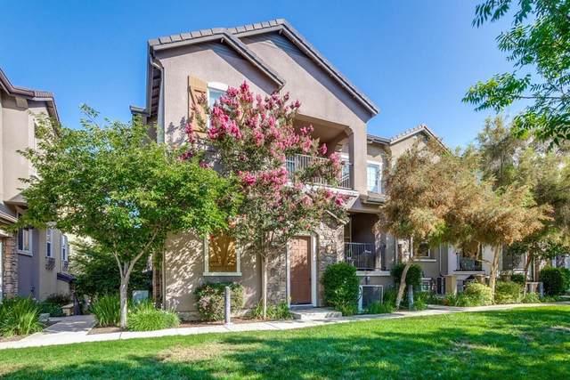 1679 Lorient Terrace, San Jose, CA 95133 (#ML81856786) :: Koster & Krew Real Estate Group | Keller Williams