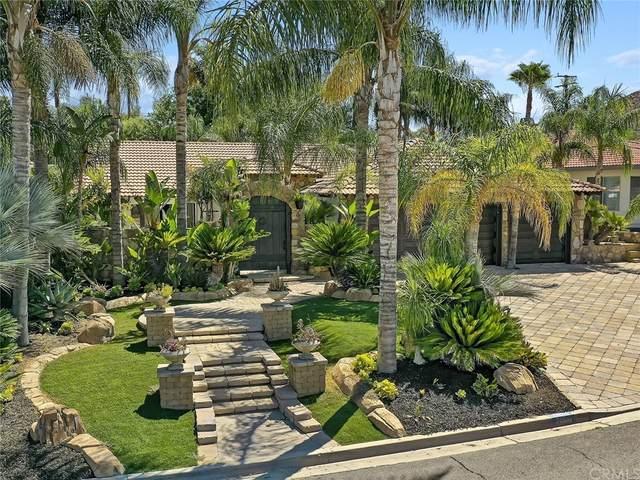 21910 San Joaquin Drive W, Canyon Lake, CA 92587 (#SW21167486) :: Necol Realty Group