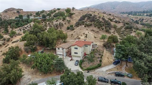 11321 Blue Sage Drive, Kagel Canyon, CA 91342 (#BB21171468) :: Steele Canyon Realty