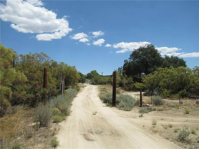 0 Chihuahua Valley Road, Warner Springs, CA 92086 (#SW21171482) :: Necol Realty Group