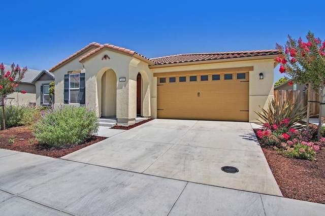 441 Segovia Drive, Hollister, CA 95023 (#ML81856320) :: Steele Canyon Realty