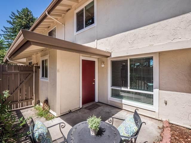 213 Palo Verde Terrace, Santa Cruz, CA 95060 (#ML81853306) :: Zen Ziejewski and Team