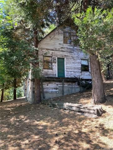 0 Pine Drive, Cedarpines Park, CA 92322 (#EV21172231) :: BirdEye Loans, Inc.