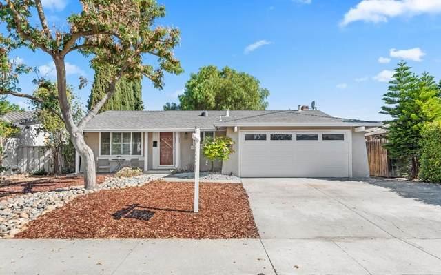 489 Conlin Court, San Jose, CA 95123 (#ML81856967) :: BirdEye Loans, Inc.