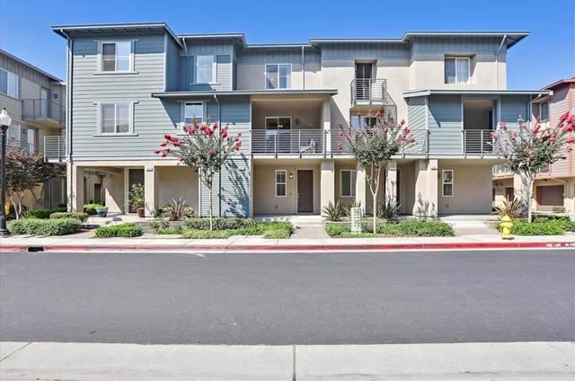 973 Sakura Drive, San Jose, CA 95112 (#ML81856964) :: BirdEye Loans, Inc.