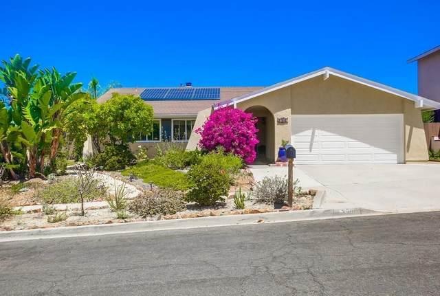 3906 Wooster Drive, Oceanside, CA 92056 (#210022237) :: BirdEye Loans, Inc.