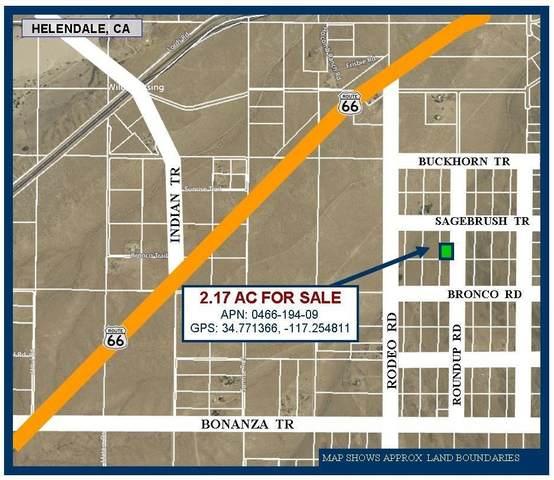 2 AC Roundup Road, Helendale, CA 92342 (#537977) :: Mainstreet Realtors®