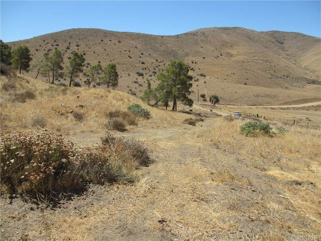 0 Anthony Road, Agua Dulce, CA 91390 (#SR21173423) :: Swack Real Estate Group | Keller Williams Realty Central Coast
