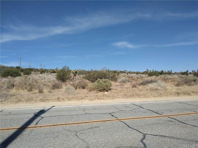 0 Longview Rd & Old Homestead, Juniper Hills, CA 93543 (#SR21174269) :: Steele Canyon Realty