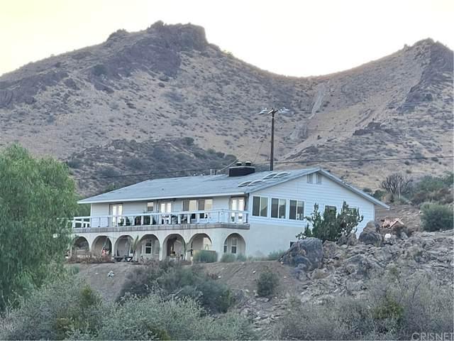 11435 Frascati Street, Agua Dulce, CA 91390 (#SR21176778) :: Steele Canyon Realty