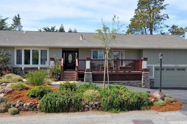 3715 Oak Canyon Lane, Morgan Hill, CA 95037 (#ML81857923) :: Steele Canyon Realty