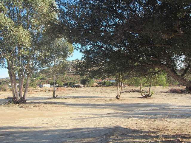 32064 Hwy 94, Campo, CA 91906 (#PTP2105756) :: Jett Real Estate Group