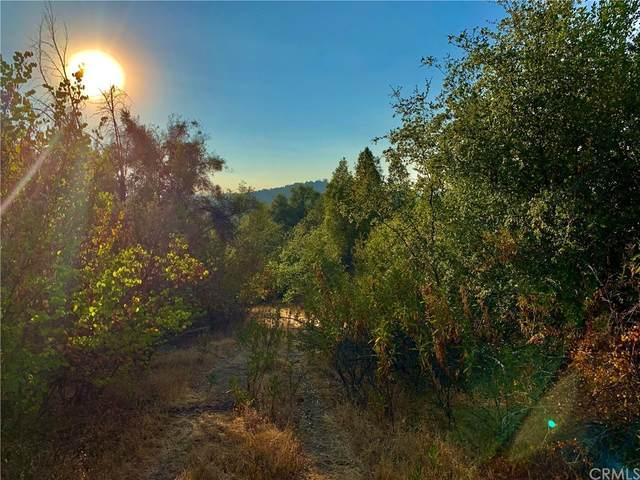 25 Granite Dome Road, Mariposa, CA 95338 (#MP21179168) :: Zen Ziejewski and Team
