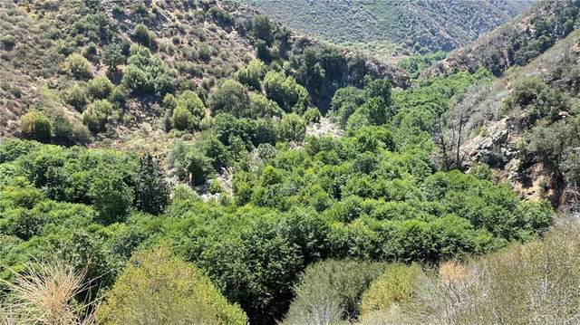 14 Tract 6864, Mount Baldy, CA 91759 (#PW21177587) :: Robyn Icenhower & Associates