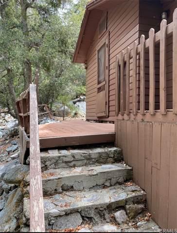 8 Ice House Canyon, Mount Baldy, CA 91759 (#CV21180481) :: Robyn Icenhower & Associates