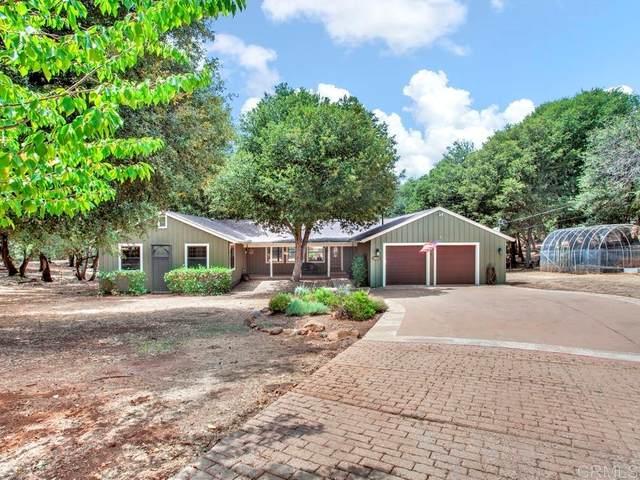 5009 Pine Ridge Avenue, Julian, CA 92036 (#PTP2105811) :: Jett Real Estate Group