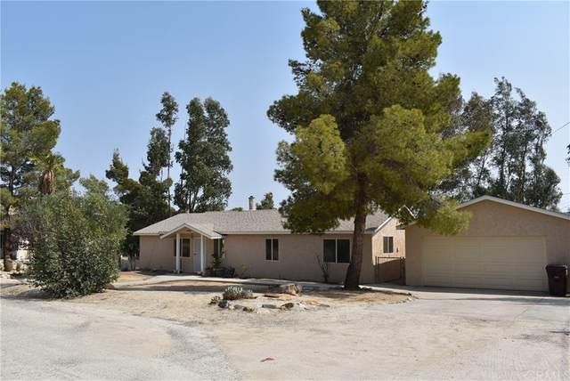 48831 Garden Drive, Morongo Valley, CA 92256 (#JT21182740) :: RE/MAX Empire Properties