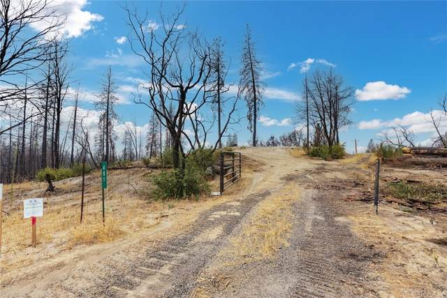 461 Craig Access Road, Oroville, CA 95966 (#SN21181610) :: The Laffins Real Estate Team