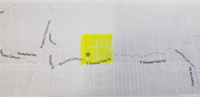 0 Vac/Soledad Pass Drt /Vic Hill, Acton, CA 93510 (#SR21184296) :: Zen Ziejewski and Team