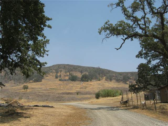20276 Morgan Valley Road, Lower Lake, CA 95457 (#LC21185551) :: Steele Canyon Realty