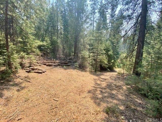 7150 Snyder Creek Drive, Mariposa, CA 95338 (#MP21172223) :: Twiss Realty