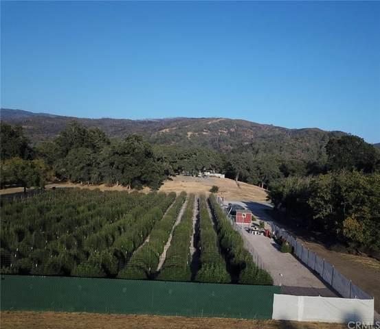 2001 Ladder Ridge Road, Upper Lake, CA 95485 (#LC21175271) :: Zutila, Inc.